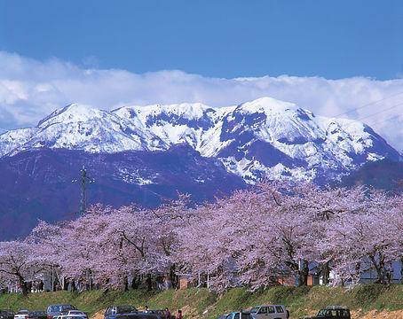 ③-1-1 ①【勝山】サイクリングで巡る勝山まち観光 .jpg