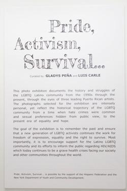 Pride, Activism, Survival