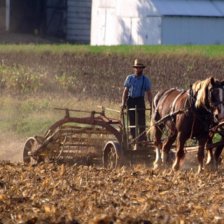 Arbeiten der Amish