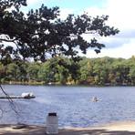 Der Panther Lake