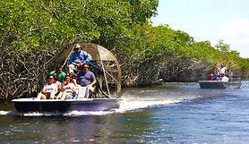 Mit dem Speedboat durch die Everglades