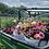 Thumbnail: Bi Weekly, 8 Weeks Mixed Flower CSA