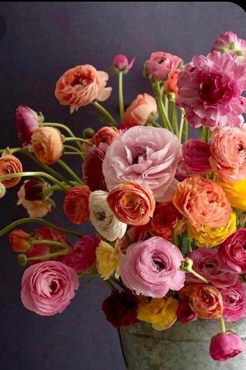 RANUNCULUS Bouquet!!!