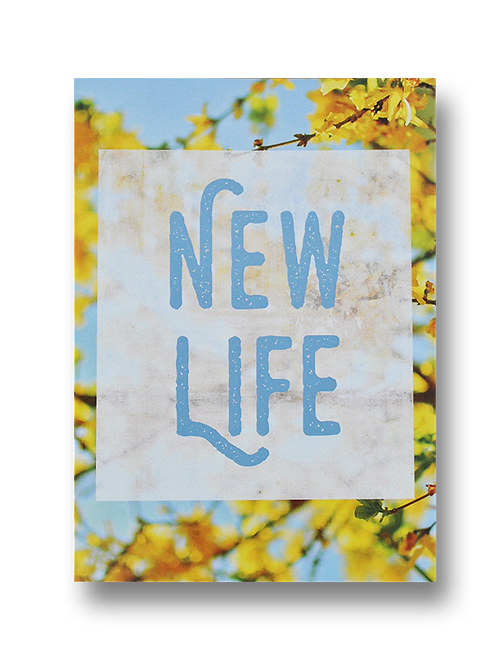 New Life (8 pack)