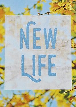 new-life_edited.jpg