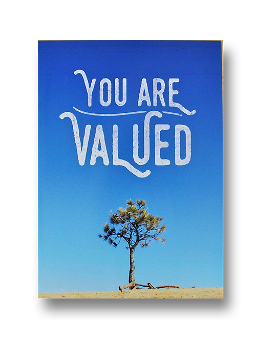 You Are Valued (8 pack)