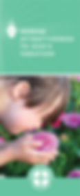 serene-attentiveness-brochure-cover.png