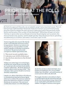 rlp-20-priorities-at-the-polls-bulletin-