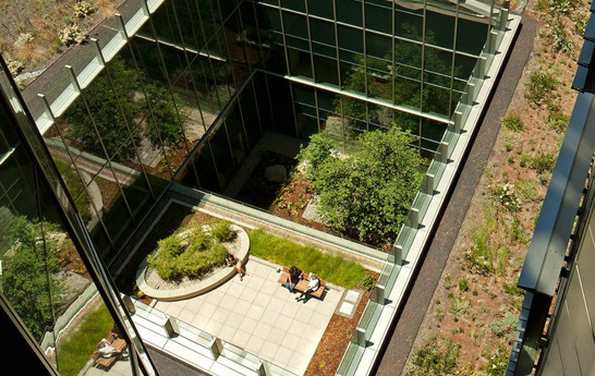 Unitized Curtain Wall in Courtyard