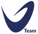 V team Logo_mavi.png