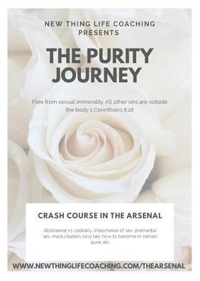 Purity Journey flyer.png
