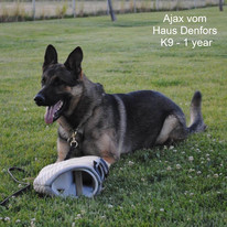 Ajax-1j.JPG