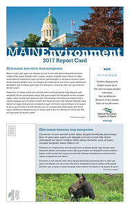NRCM brochure template