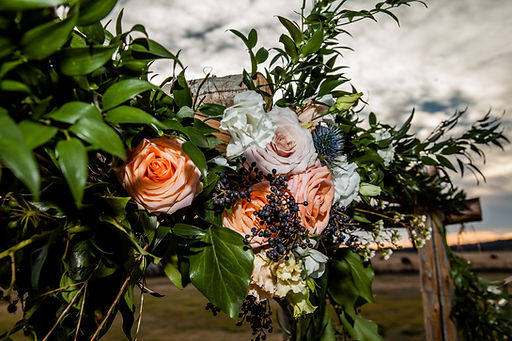 Gorgouesarchflowers.jpg