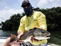 Anna Maria Island Charters Redfish
