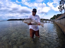 Anna Maria Island Redfish Fishing