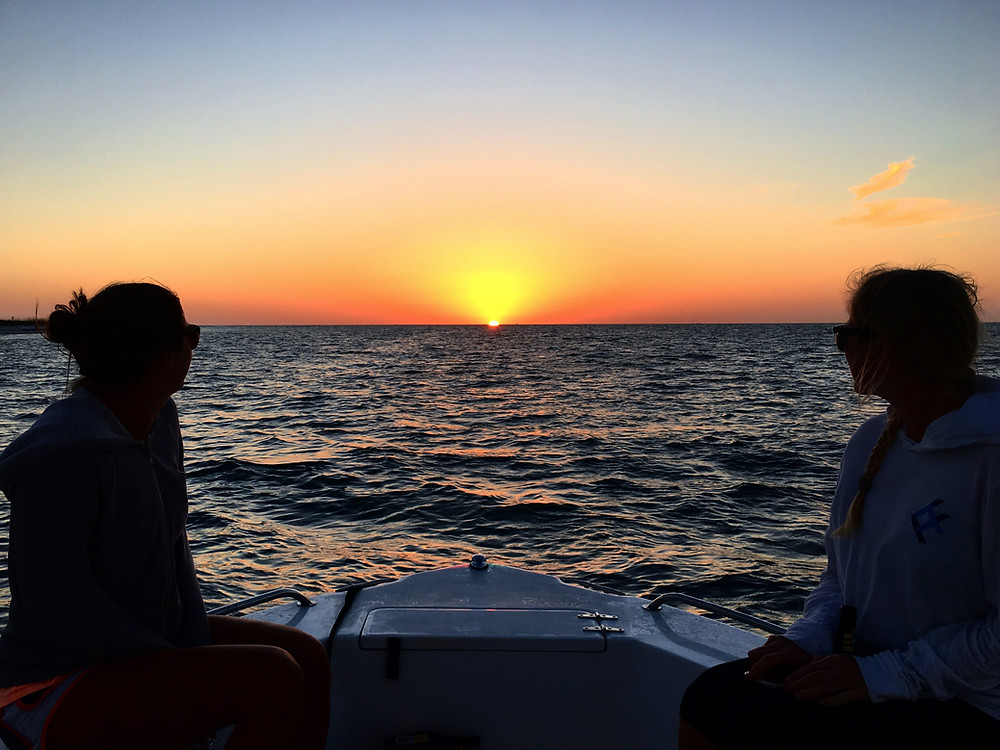Anna Maria Island sunsets are too beautiful for words -- and the green flash exists!