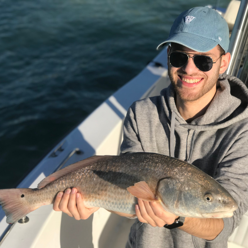 Anna Maria Island Fishing Redfish