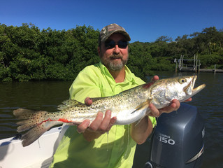 Snook Sized Trout Leads The Week // Anna Maria Island Fishing Report // Customer Catch of the Week
