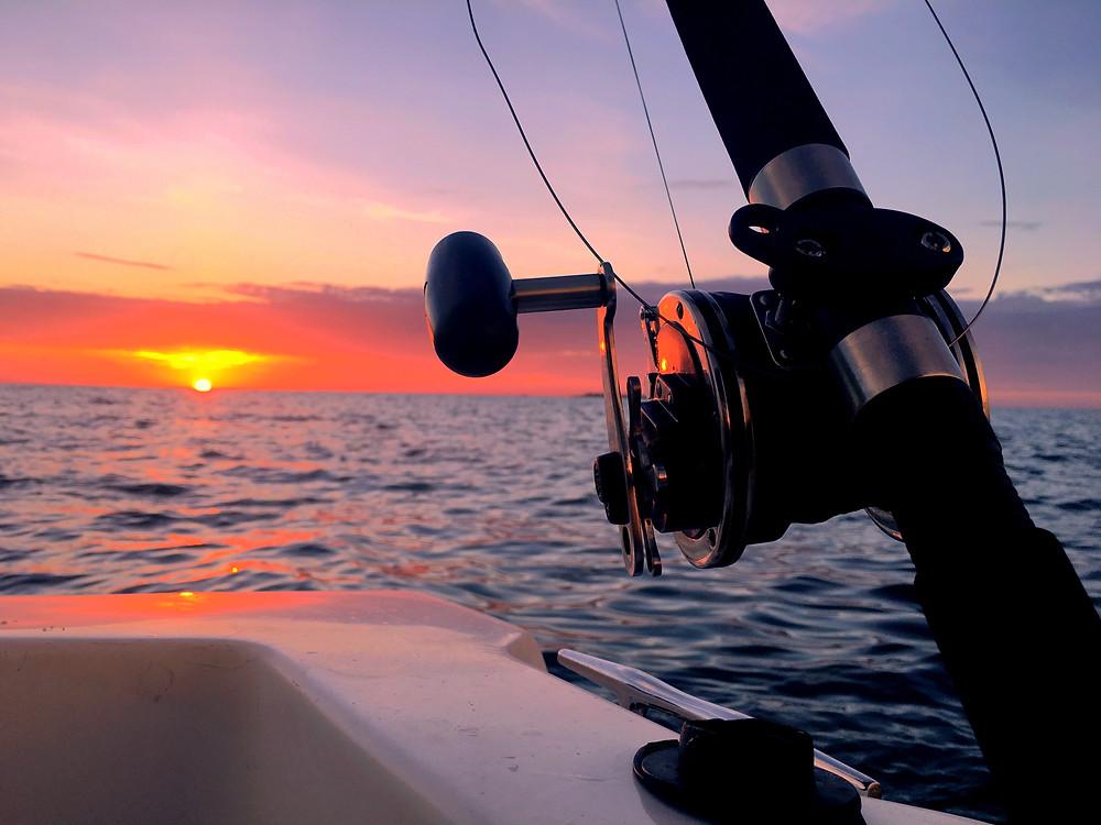Anna Maria Island Sunset Shark Fishing / Anna Maria Island Fishing Charters