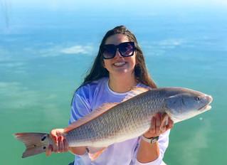 Anna Maria Island December Fishing Report