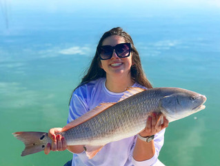 Anna Maria Island December Fishing Report