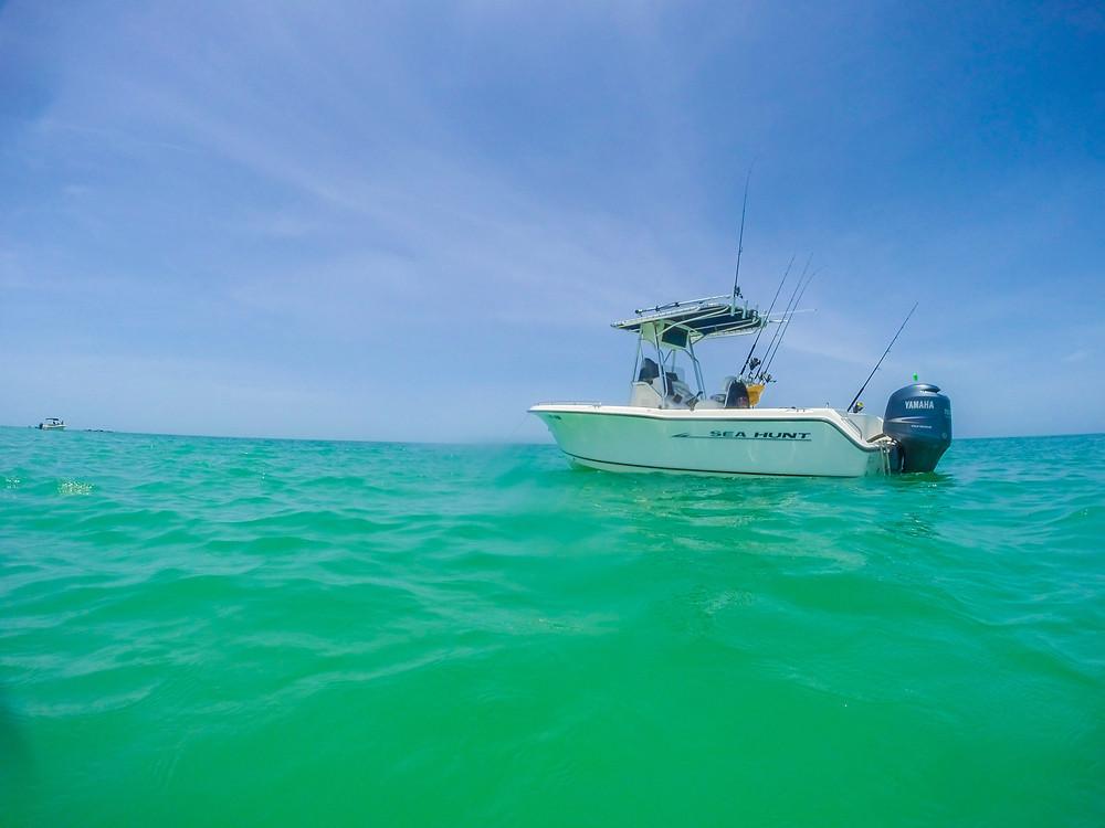 Egmont Key boat tours
