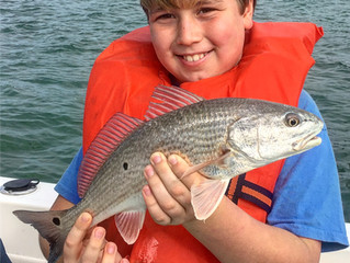 Anna Maria Island Fishing Report: Cold Fronts Usher in the New Year