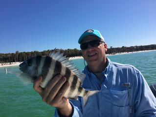 AMI Fishing Report | Feb. 12, 2017