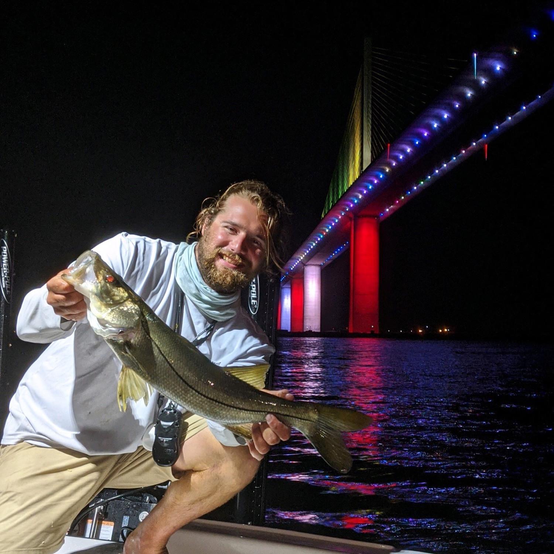 Docklight Fishing (Night Trip)