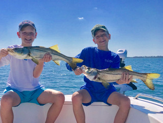 Anna Maria Island Spring Fishing Report: March/April 2019