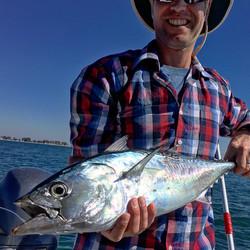 Bonito fishing