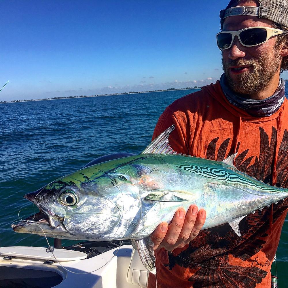 Bonito fishing with AMI Charters
