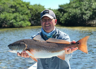 Anna Maria Island Fishing Report: Feburary 2020