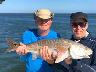 Anna Maria Island Winter Fishing Report: January/February 2019