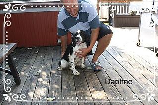 Daphne_edited_edited.jpg