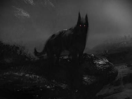 Simbologia del cane nero.