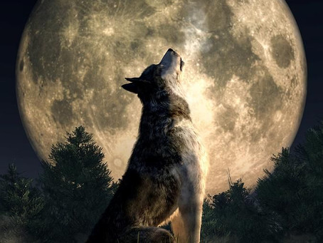 12 Gennaio: Luna del Lupo.