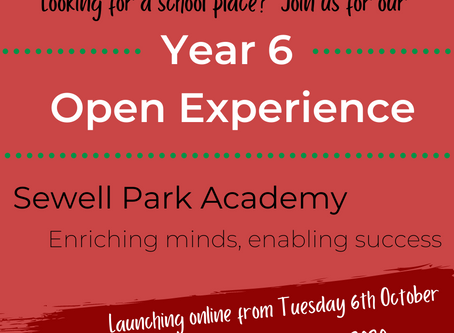 Virtual Open Experience 06/10/2020