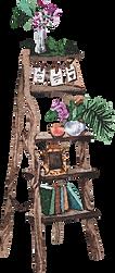 furniture ladder.png