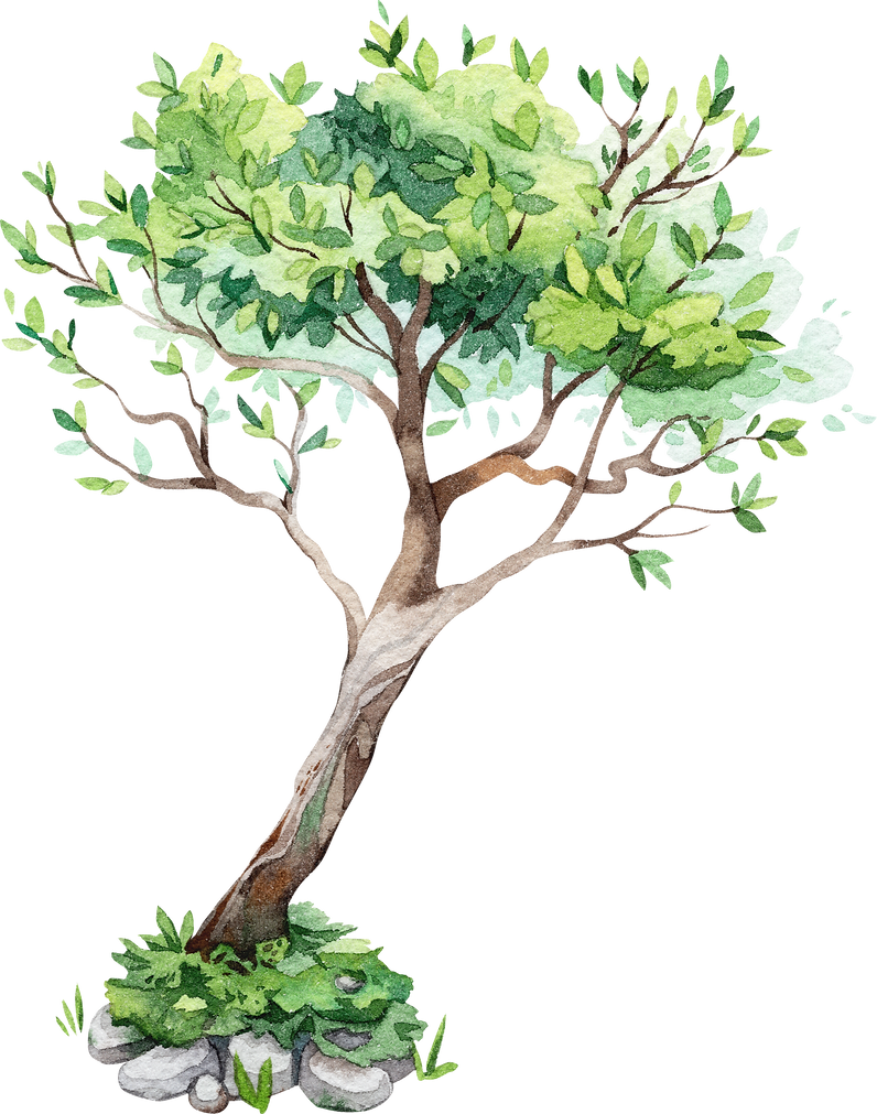 nature%20tree%201_edited.png