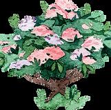 nature shrub 2.png