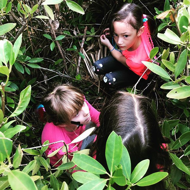 The positive effects of nature play for