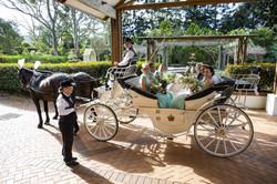 Tamborine Wedding