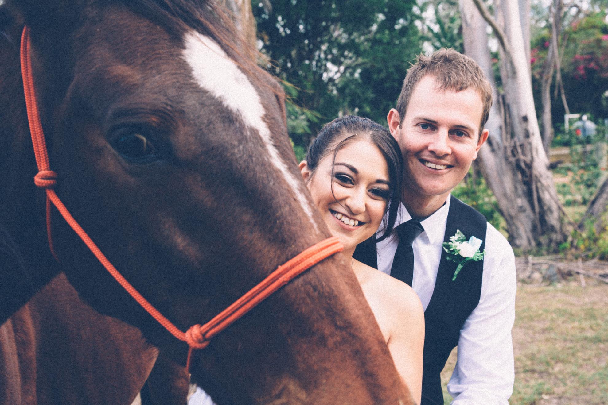 Horse Wedding Photographer