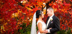 Stanthorpe Wedding Photographer