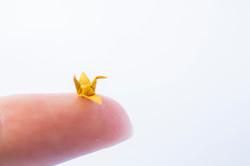 Miniature Product Shot