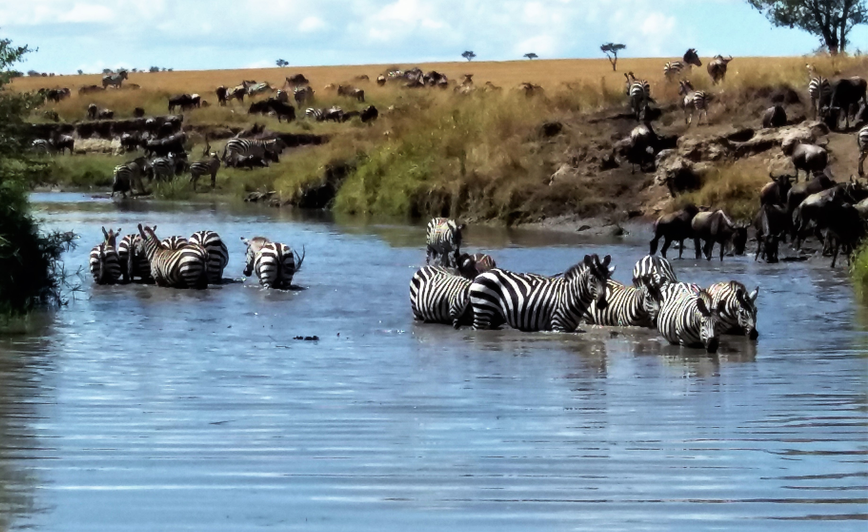 Helping Hand African Tours & Safaris