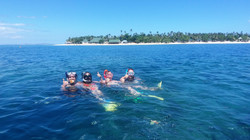 Snorkel the reef