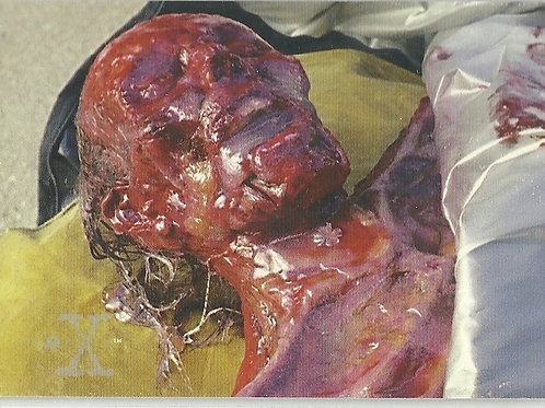 1996 X-Files Season Three #43 Emulsified Remains